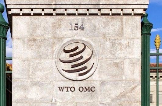 چه کسی بر کرسی رابرت آزودو در WTO تکیه خواهد زد؟